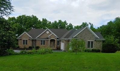 7611 Burr Oak Drive, McHenry, IL 60050 - #: 10444099