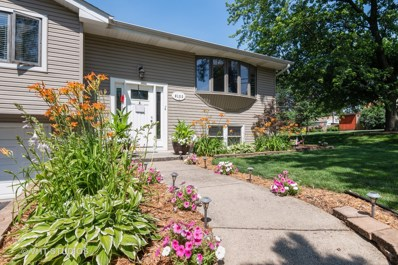 6100 Chase Avenue, Downers Grove, IL 60516 - #: 10445288