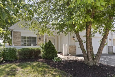 21309 W Crimson Court, Plainfield, IL 60544 - #: 10445316