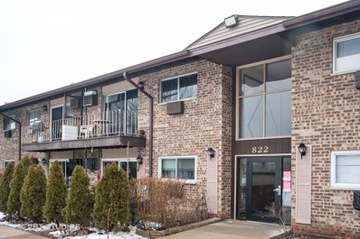 822 E Old Willow Road UNIT 201, Prospect Heights, IL 60070 - #: 10445829
