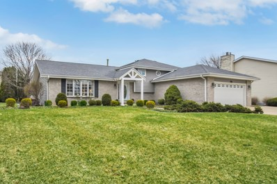 10 Honey Lane, New Lenox, IL 60451 - #: 10446063