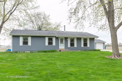 1207 Willida Avenue, Wilmington, IL 60481 - #: 10446176