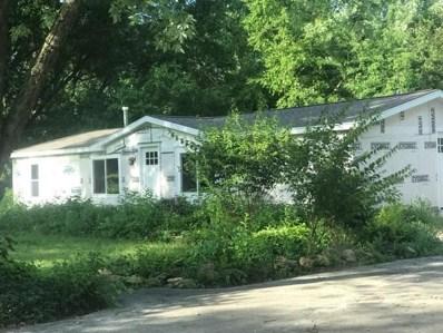 937 N Division Street, Braidwood, IL 60408 - #: 10446759