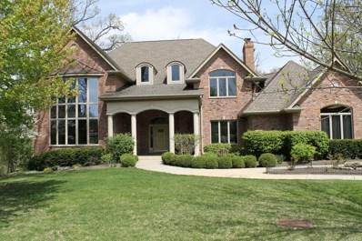 20678 Abbey Drive, Frankfort, IL 60423 - MLS#: 10446991