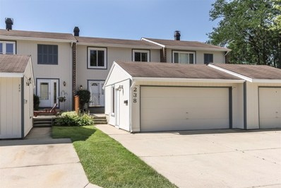 238 Oakwood Lane UNIT 108, Bloomingdale, IL 60108 - #: 10447011