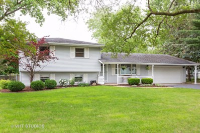 2816 Westmorland Avenue, New Lenox, IL 60451 - #: 10447065