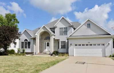 1124 Game Trail S, Bourbonnais, IL 60914 - #: 10447274