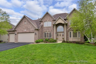 143 Pineridge Drive S, Oswego, IL 60543 - #: 10447560