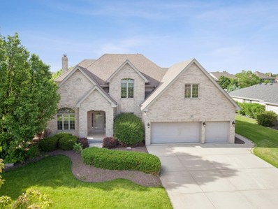 765 Stirrup Lane, New Lenox, IL 60451 - #: 10447678