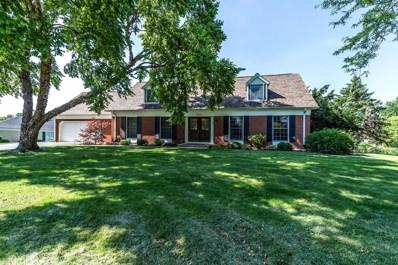 25054 W Mary Lane, Plainfield, IL 60586 - MLS#: 10447711