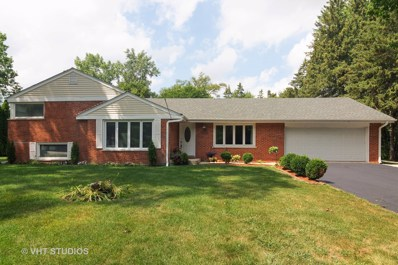 1008 W Wildwood Drive, Prospect Heights, IL 60070 - #: 10448017