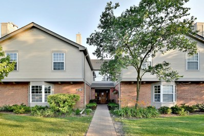 133 Idle Wild Court UNIT 6, Schaumburg, IL 60195 - #: 10448774