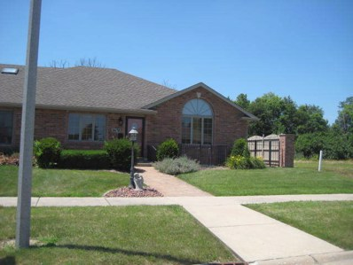 1670 Kirsten Lee Drive, Wilmington, IL 60481 - #: 10449026