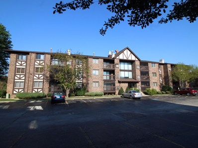 10355 Menard Avenue UNIT 216, Oak Lawn, IL 60453 - #: 10449324