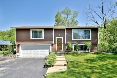 28630 W Kendall Avenue, Spring Grove, IL 60081 - #: 10449871