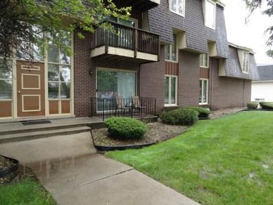 5721 W 103rd Street UNIT 102, Oak Lawn, IL 60453 - #: 10451659