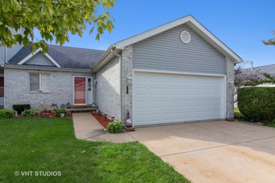 233 N Harbor Landing, Braidwood, IL 60408 - MLS#: 10452036