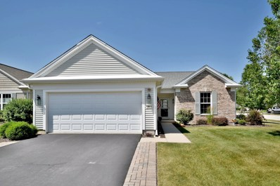 13614 Ivy Drive, Huntley, IL 60142 - #: 10452528