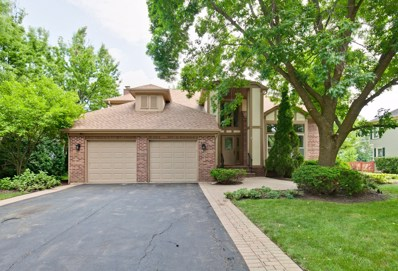 45 Saint Clair Lane, Vernon Hills, IL 60061 - #: 10452648