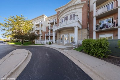 601 W Rand Road UNIT 116, Arlington Heights, IL 60004 - #: 10452965