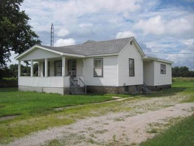 1022 W Main Street, Braidwood, IL 60408 - #: 10453147