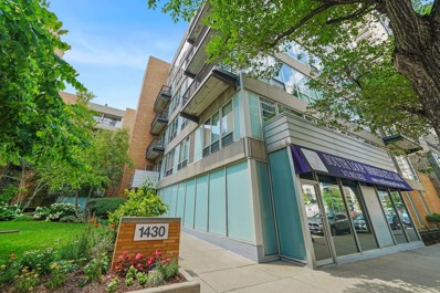 1430 S Michigan Avenue UNIT 210, Chicago, IL 60605 - #: 10453260