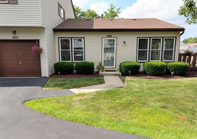 20146 S Deerfield Court UNIT A, Frankfort, IL 60423 - #: 10453277