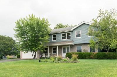 18761 Spring Creek Street, New Lenox, IL 60451 - #: 10454037