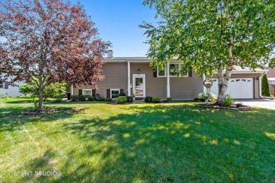 457 Mary Lane, Crystal Lake, IL 60014 - #: 10454149