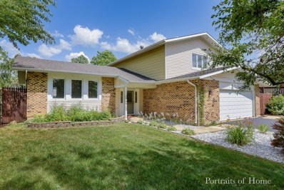 364 Tarrington Way, Bolingbrook, IL 60440 - #: 10454973