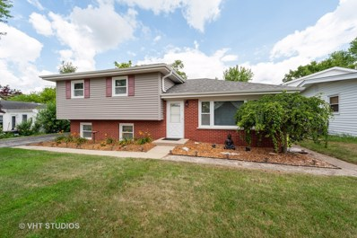 14 W Oak Street, Lake In The Hills, IL 60156 - #: 10456456