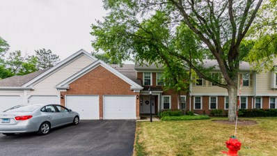 500 Loch Lomond Lane UNIT A, Prospect Heights, IL 60070 - #: 10456737