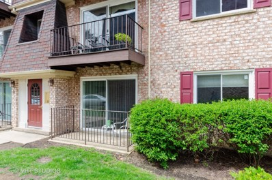 884 S Plum Grove Road UNIT 111, Palatine, IL 60067 - #: 10457551