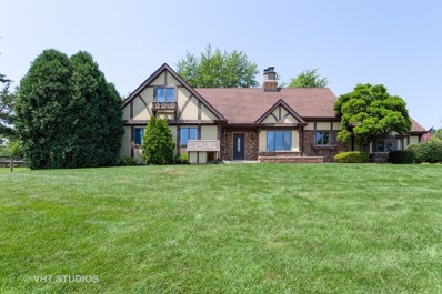 13411 W Regan Road, Mokena, IL 60448 - #: 10458631