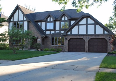 6240 Squire Lane, Willowbrook, IL 60527 - #: 10459489