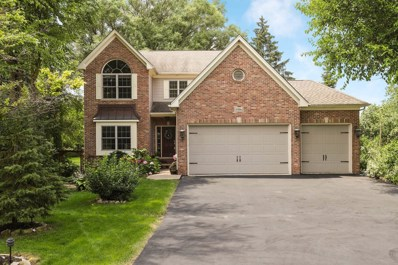 5916 Woodward Avenue, Downers Grove, IL 60516 - #: 10459745