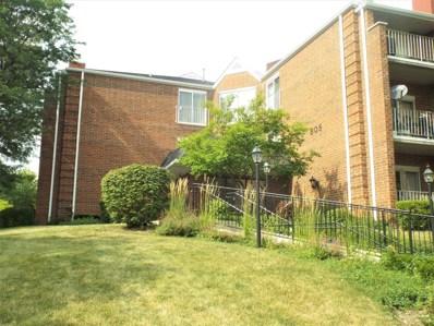 805 Leicester Road UNIT B215, Elk Grove Village, IL 60007 - #: 10460074
