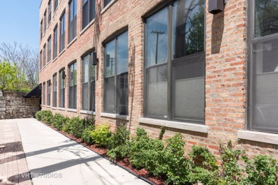 1760 W Wrightwood Avenue UNIT 313, Chicago, IL 60614 - #: 10460887