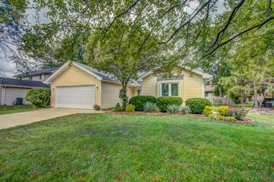 2299 Woodview Lane, Naperville, IL 60565 - #: 10461008