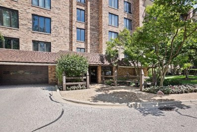 3860 Mission Hills UNIT 109, Northbrook, IL 60062 - #: 10461228