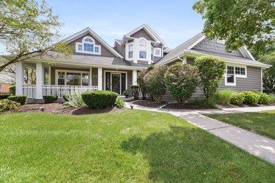 2524 High Meadow Road, Naperville, IL 60564 - #: 10461903