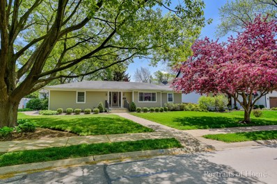 810 Douglas Avenue, Naperville, IL 60540 - #: 10462459