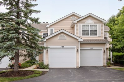 383 Fallbrook Court UNIT 17383, Schaumburg, IL 60194 - #: 10462547