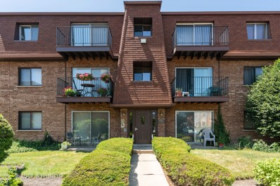 624 Cobblestone Circle UNIT E, Glenview, IL 60025 - #: 10462823