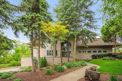 13617 S Kickapoo Trail, Homer Glen, IL 60491 - #: 10463356