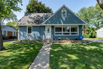 1134 Harms Avenue, Libertyville, IL 60048 - #: 10463479
