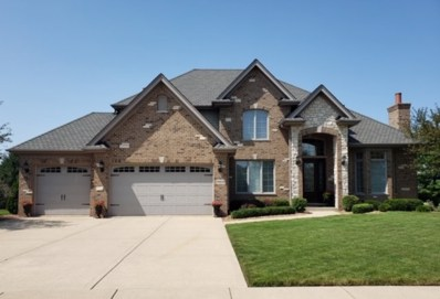 19824 Golden Oak Lane, Mokena, IL 60448 - #: 10464178