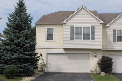 995 Timber Springs Court, Joliet, IL 60432 - #: 10464862