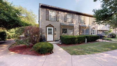 1662 Williamsburg Court UNIT B, Wheaton, IL 60189 - #: 10465402