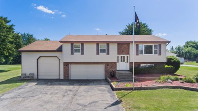 18433 S River Road, Plainfield, IL 60586 - #: 10465987